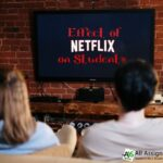 What is the effect of Netflix on students?