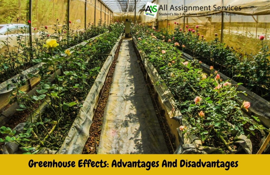 Greenhouse Effets_ Advantages & Disadvantages